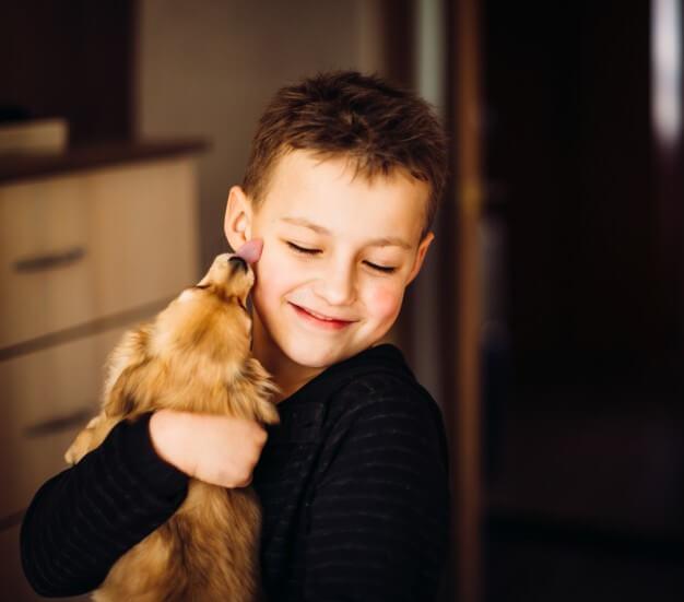 Cão lambendo uma criança